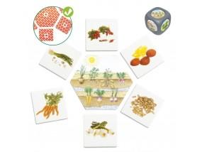 obrázek Původ potravin